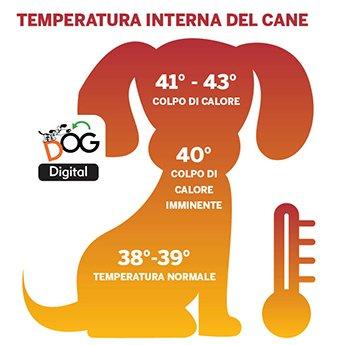 Il colpo di calore nel cane