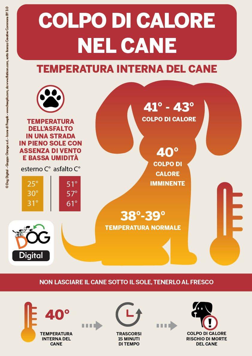Infografica che spiega il Colpo di Calore nel Cane